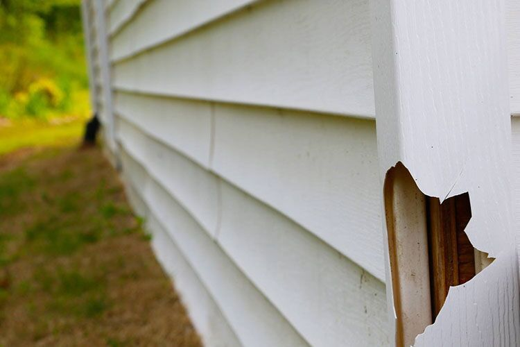 Considering vinyl siding? Here are four things to consider first.